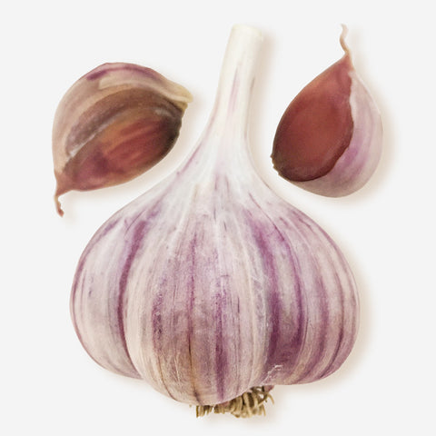 Purple Garlic - Organic (lb)