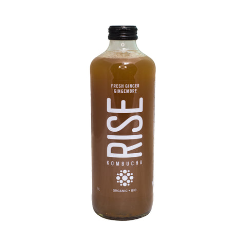 Rise Kombucha - Ginger White Tea (1L)