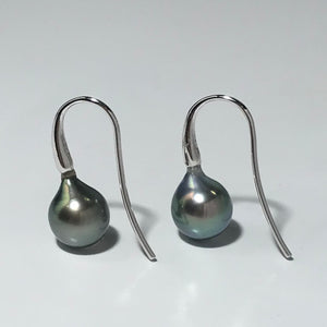 Tahitian South Sea Pearl Earrings