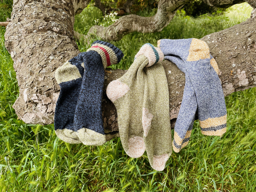 Three pairs of Socksmith Outlands socks hanging on a tree branch