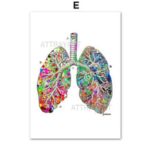 Load image into Gallery viewer, Anatomy Heart Brain Abstract Medicine Wall Art