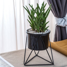 Load image into Gallery viewer, Geometric Decor Vase Planter Modern Simple