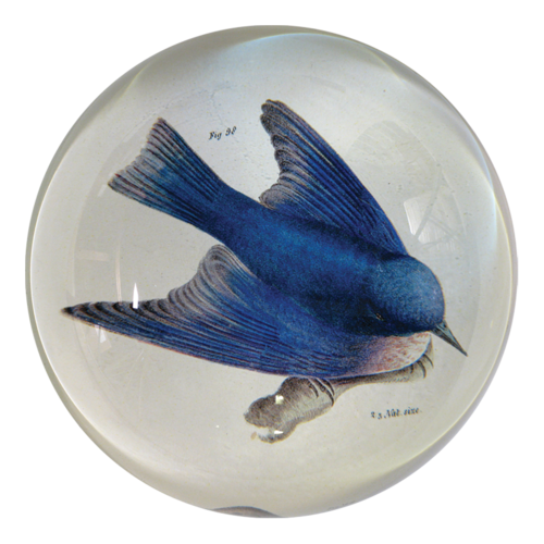 Bluebird Dome Paperweight - Mag.Pi