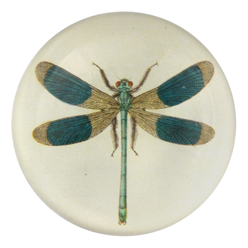Dragonfly Dome Paperweight - Mag.Pi