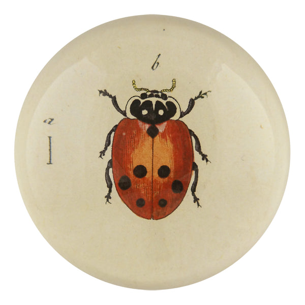 Ladybug Dome Paperweight - Mag.Pi