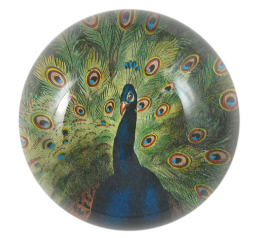 Peacock Dome Paperweight - Mag.Pi