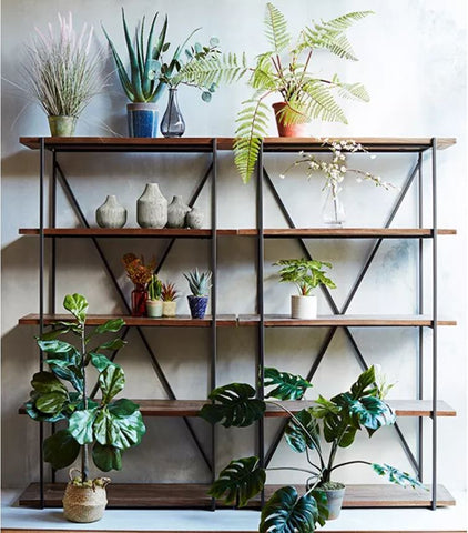 Wooden Shelf with Plants On