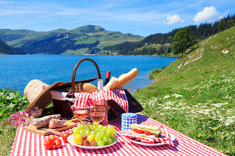 Perfect Picnic Overlooking a Lake