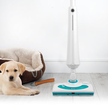 Beldray 2 In 1 Steam Cleaner with Detergent Head