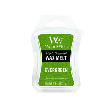Woodwick Mini Wax Melt Evergreen