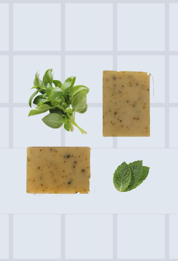 Fresh Soap - Basil & Mint
