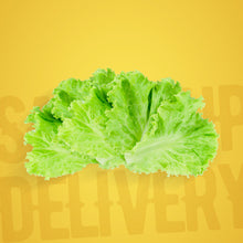 Load image into Gallery viewer, Lettuce (350g)