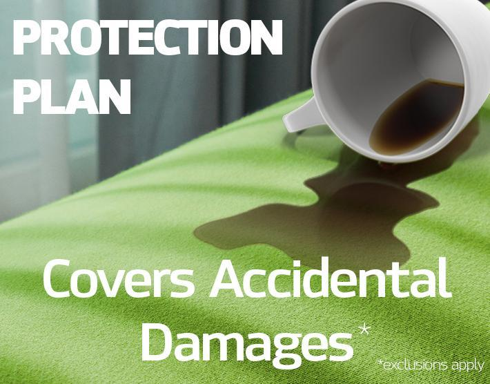 2 Year Protection Plan - $250-299