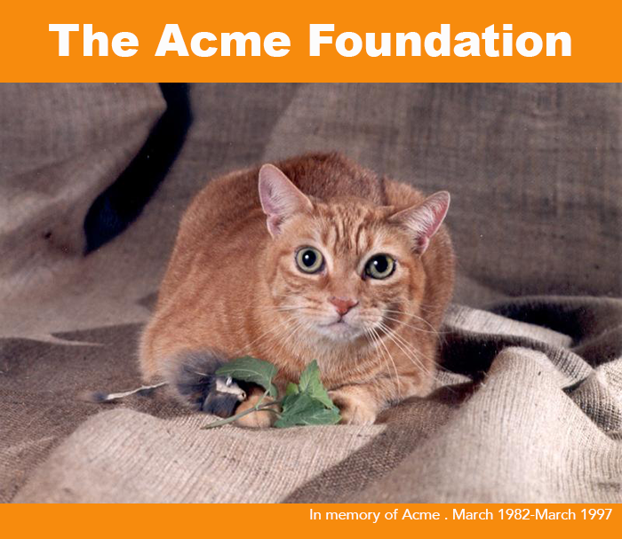 The Acme Foundation