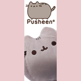 Pusheen Accessory Case