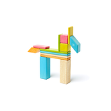 Magnetic Wooden Blocks in 14-piece Tegu Tints