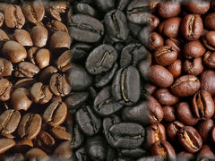 6. Roasted Bean (Blend)