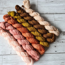 Load image into Gallery viewer, Winter/Spring Tonal Mini Skeins