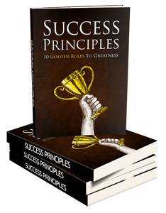 Success Principles (E-Book)