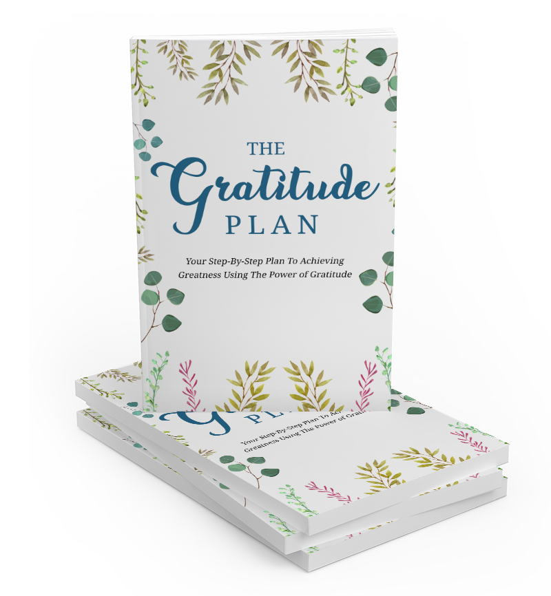 The Gratitude Plan (E-Book)