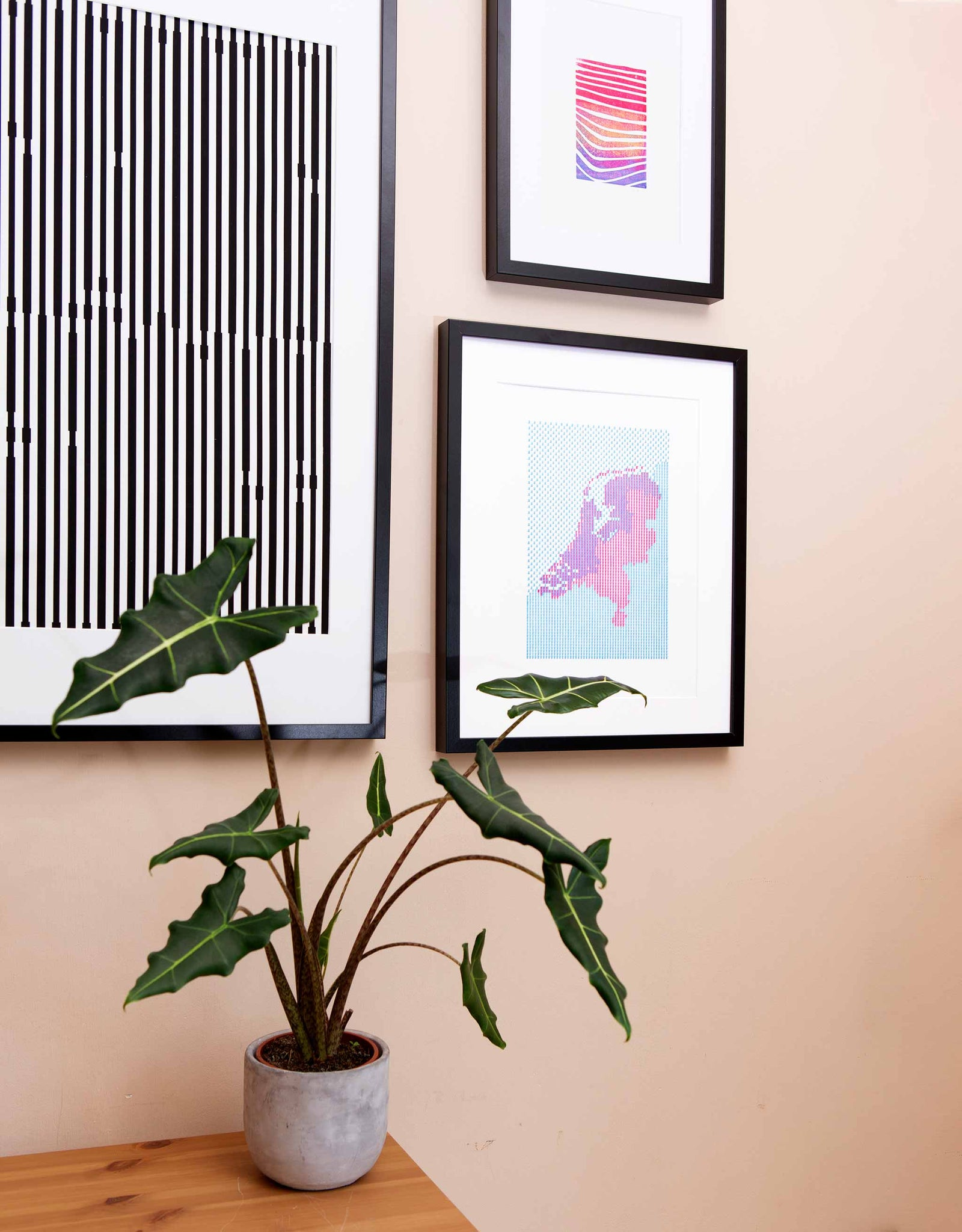 Angle view of Letterpress patterned map of The Netherlands in magenta and blue. Shown in black frame on wall with plant and other art.