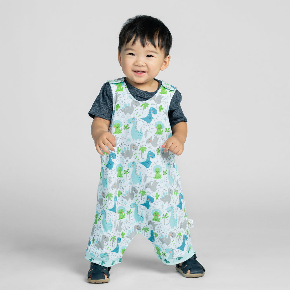 Dino and Cactus Organic Reversible Romper