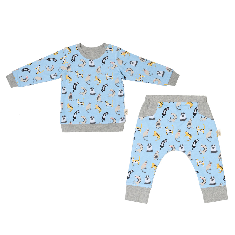 Funny Cats Reversible Jumper Pants Set