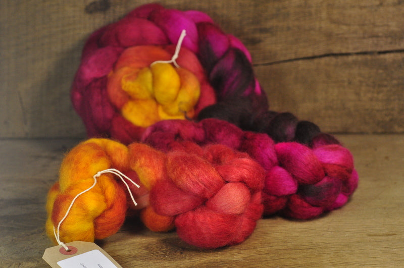 BFL Wool Top for Hand Spinning - 'Acer Gradient'