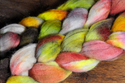 BFL Wool Top for Hand Spinning - 'Autumn Leaves'