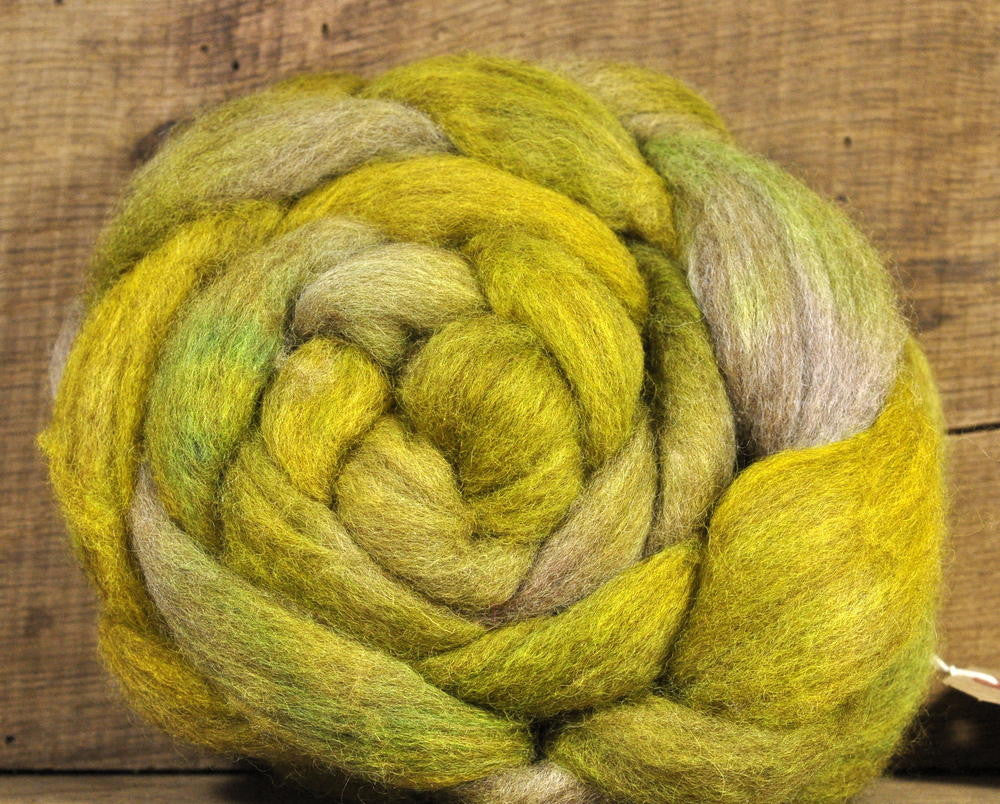 BFL Wool Top for Hand Spinning - 'Avocado Shades'