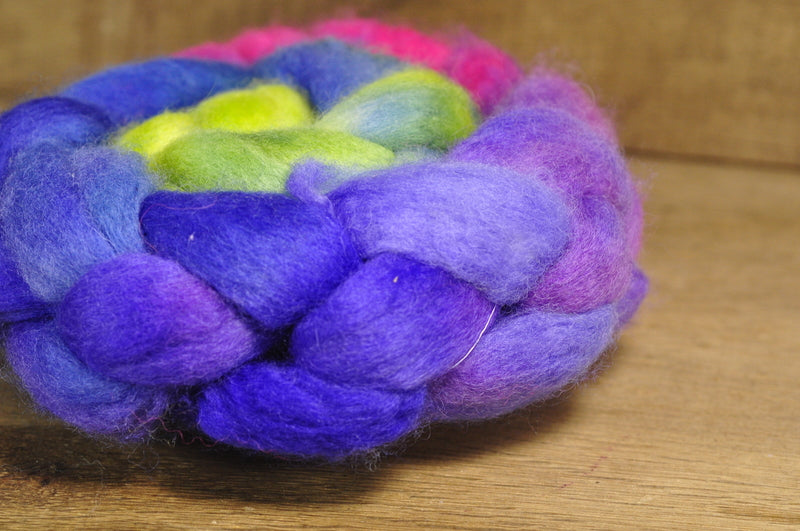 SALE! BFL Wool Top for Hand Spinning - 'Garden Gradient'