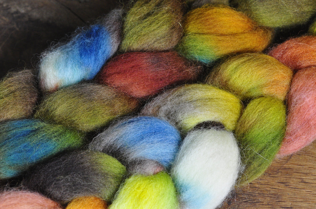 Hand Dyed English Wool Blend Top for Spinning or Felting, - 'Autumn'