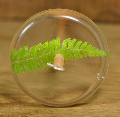 SECONDS Resin Drop Spindle - Fern Frond