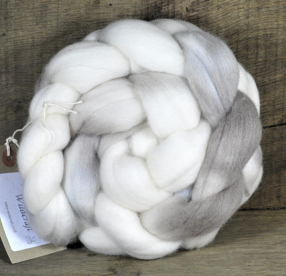 Polwarth Wool Top for Handspinning - 'Honesty Moons'