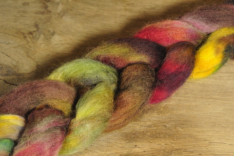 Hand Dyed Wool Top for Spinning or Felting: Romney - 'Russetty'