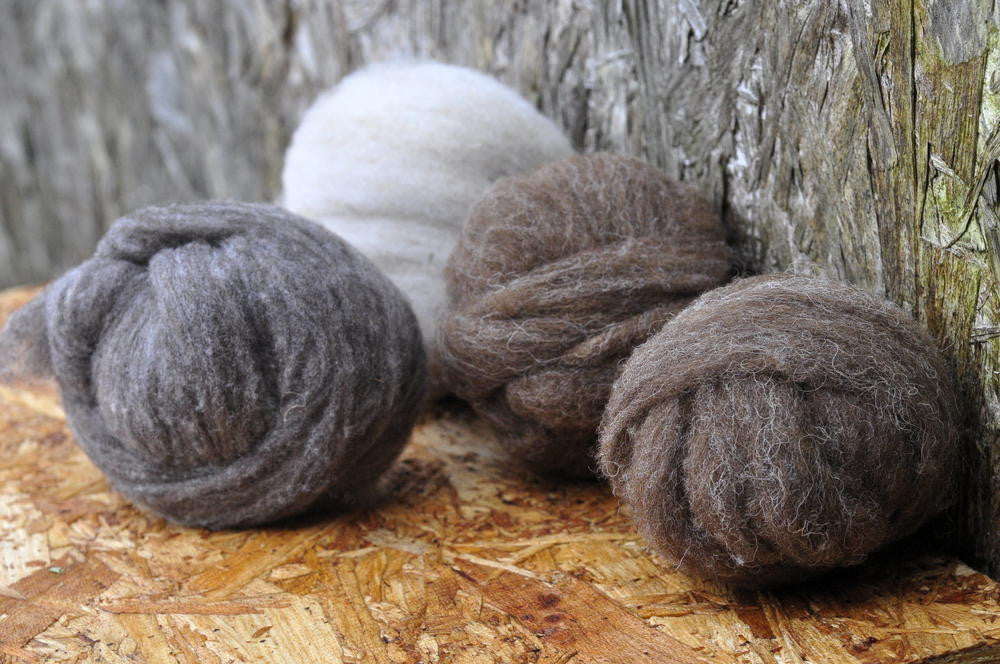 Homegrown Shetland Sliver - 100g Colourwork Set (Moorit)