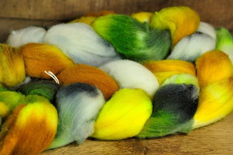 Southdown Wool Top for Hand Spinning and Felting - 'Oak Buds