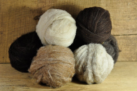 Homegrown Shetland Wool Sliver - 300g Colourwork Spectrum Set