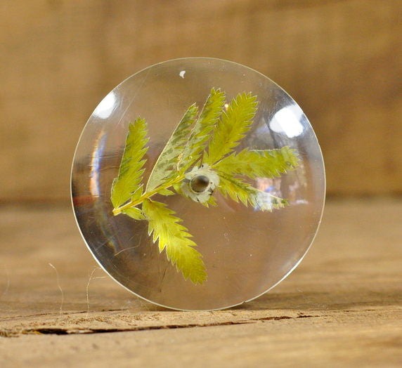 Lightweight Resin Support Spindle - Silverweed