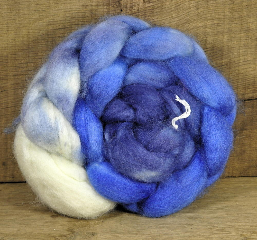Superwash BFL Wool Top - Speedwell