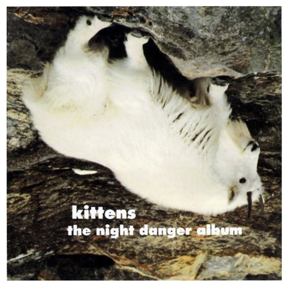 Kittens - The Night Danger Album CD