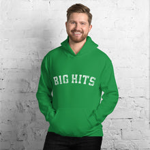 Load image into Gallery viewer, Big Hits Hoodie