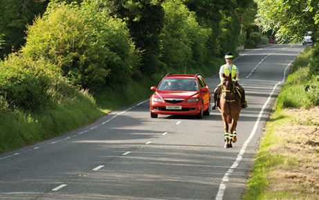 Horse and rider on country road