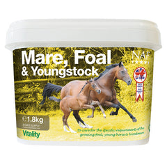 Naf Mare Foal and Youngstock
