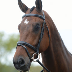 KC Flash Bridle P Brown