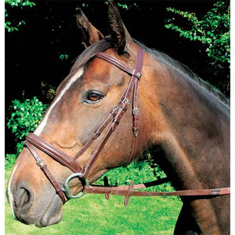 Mackey Classic Padded Leather Bridle - Brown or Black - Equeto