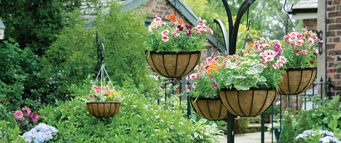 Gardman-hanging-baskets
