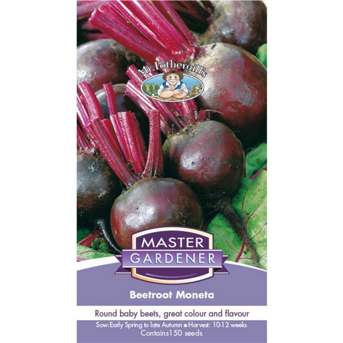 MASTER GARDENER Seeds - Beetroot Moneta