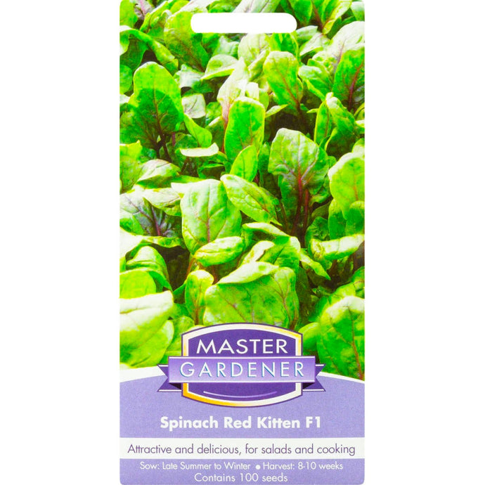 MASTER GARDENER Seeds - Spinach Red Kitten