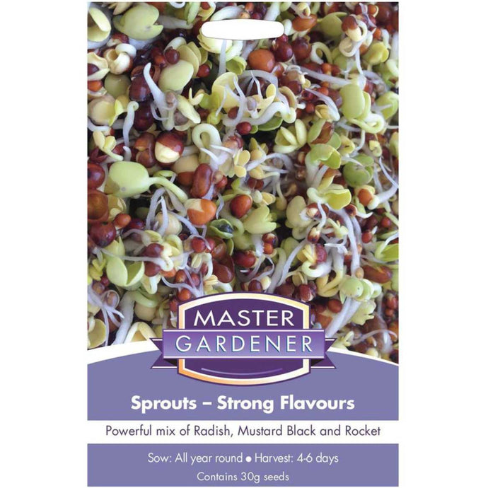 MASTER GARDENER Seeds - Sprouts Strong Flavours